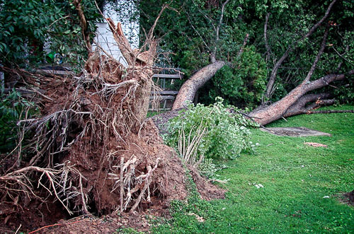 2000-08-07-Summer-Wind-Strong-Damage.jpg